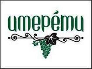 logotip-imereti_200x150_pc.jpg